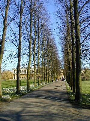 cambridge history essay For all lower sixth students, this opportunity has arisen: christ's college, cambridge, is running a history essay competition for which one must write an essay of no more 2,500 words as an answer to one of the following questions: do acts of public commemoration distort historical understanding.